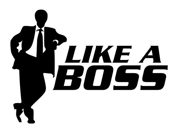 boss rc2 где скачать инструкцию